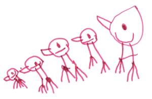 Birds, Felt-tip pen, Luna (4)